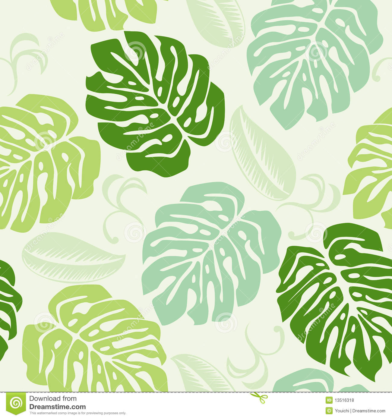 Monstera Stock Illustrations.