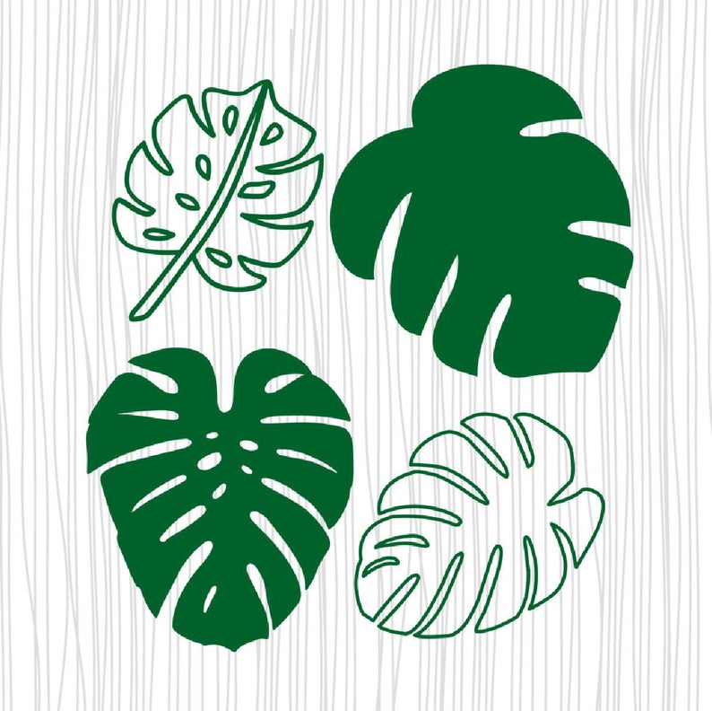 4 Tropical leaves svg, tropical leaf clipart, monstera leaf svg, palm leaf  svg, tropical party decor cricut.