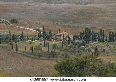 Picture of Montalcino, Italy k40961997.