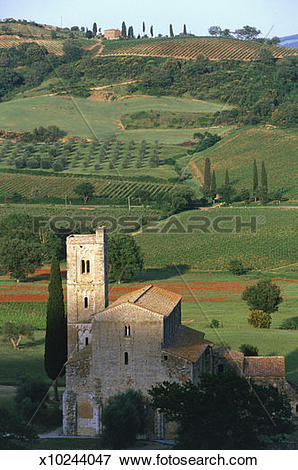 Picture of Italy, Tuscany, Montalcino, church in rural landscape.