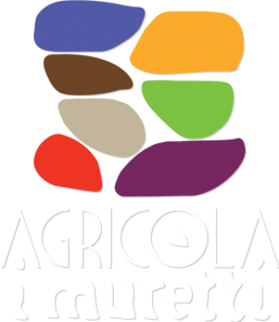 Agriturismo Rimini, Monte Colombo.
