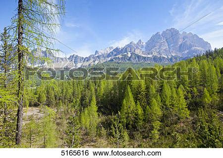 Stock Images of View to Monte Cristallo near Cortina d'Ampezzo.
