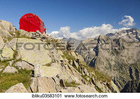"Stock Photography of ""Ibex (Capra ibex) looking at the Bivacco del."