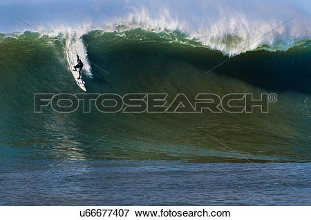 Picture of Surfer riding wave, Mavericks, Monterey Bay, California.