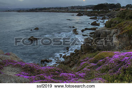 Stock Photograph of Pacific Grove and Monterey Bay at sunset with.
