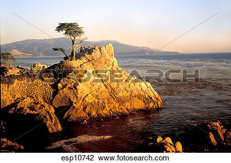 Stock Photo of California, Monterey Bay, Carmel Coast, famous.