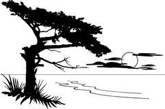 Monterey Clipart by Megapixl.
