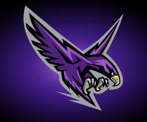 Montgomery College Raptors on Behance.