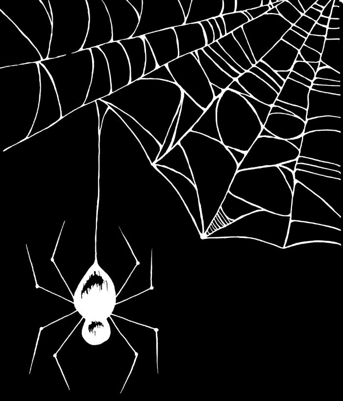 1000+ ideas about Spider Web Drawing on Pinterest.