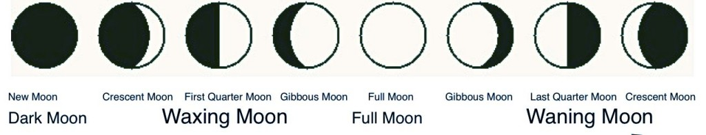 Moon Phases Clipart Black And White.