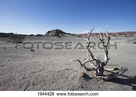 Pictures of Sand Spheres At The Cancha De Bochas, Valle De La Luna.