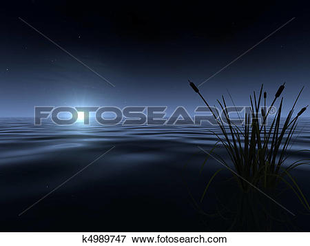 Stock Illustration of Moonrise at the Lake k4989747.