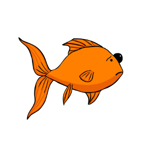 Pop eye in goldfish.
