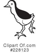 Common Moorhen Clipart #1.