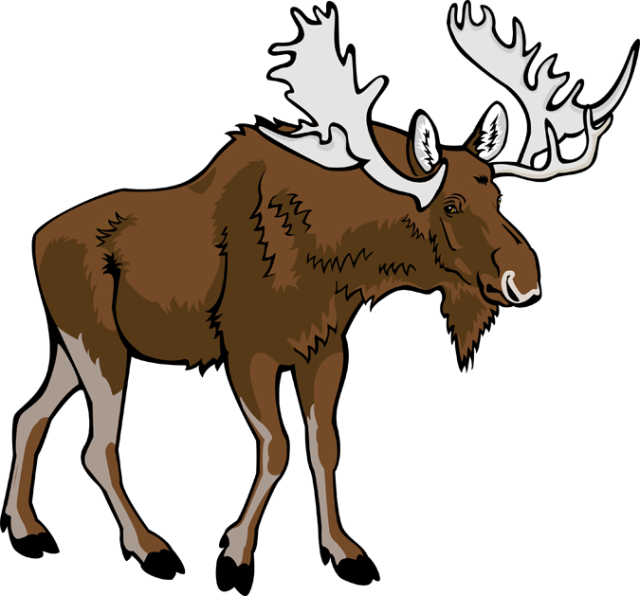 Free Moose Cliparts, Download Free Clip Art, Free Clip Art.