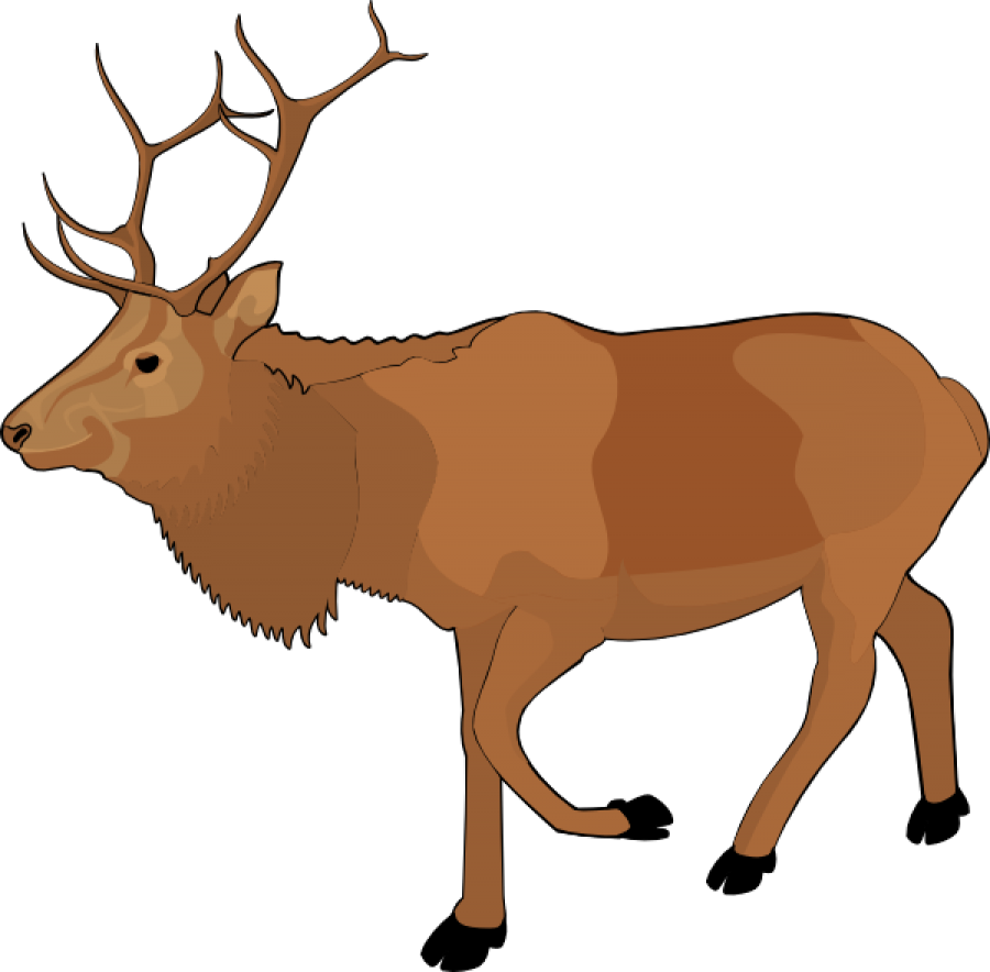 Standing Moose Clipart PNG Image.