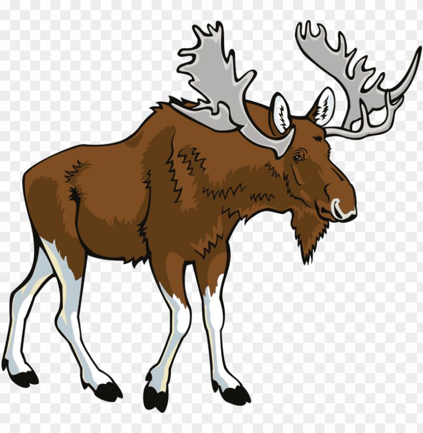 free png moose png images transparent.