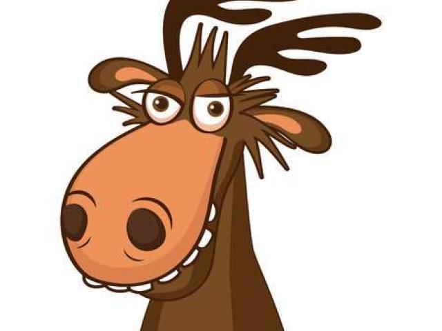 Face Clipart moose 6.