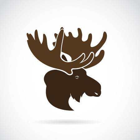 2,554 Moose Head Cliparts, Stock Vector And Royalty Free.