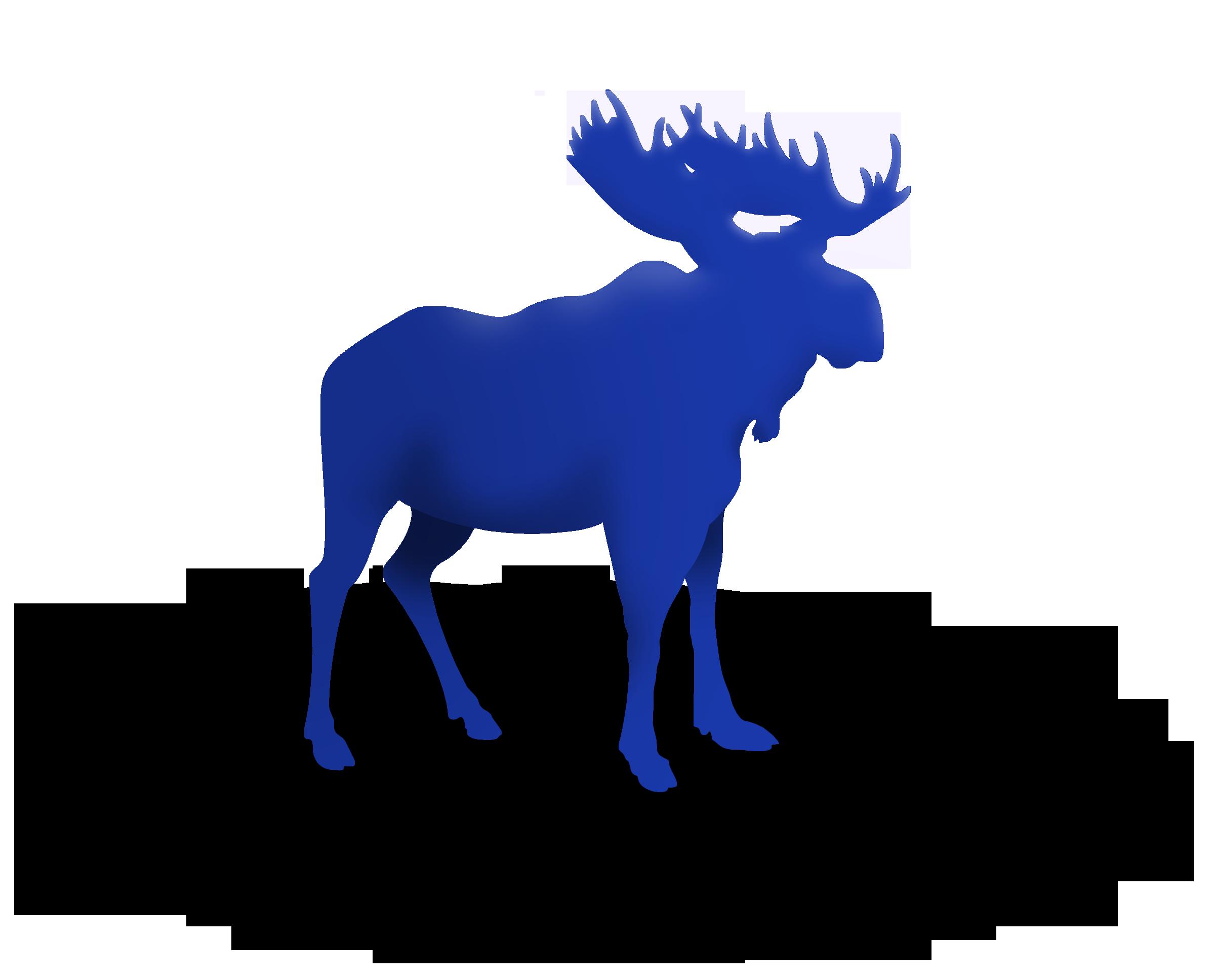 Moose on the Loose Family Fun Run & 5K Deer Birthday Clip.