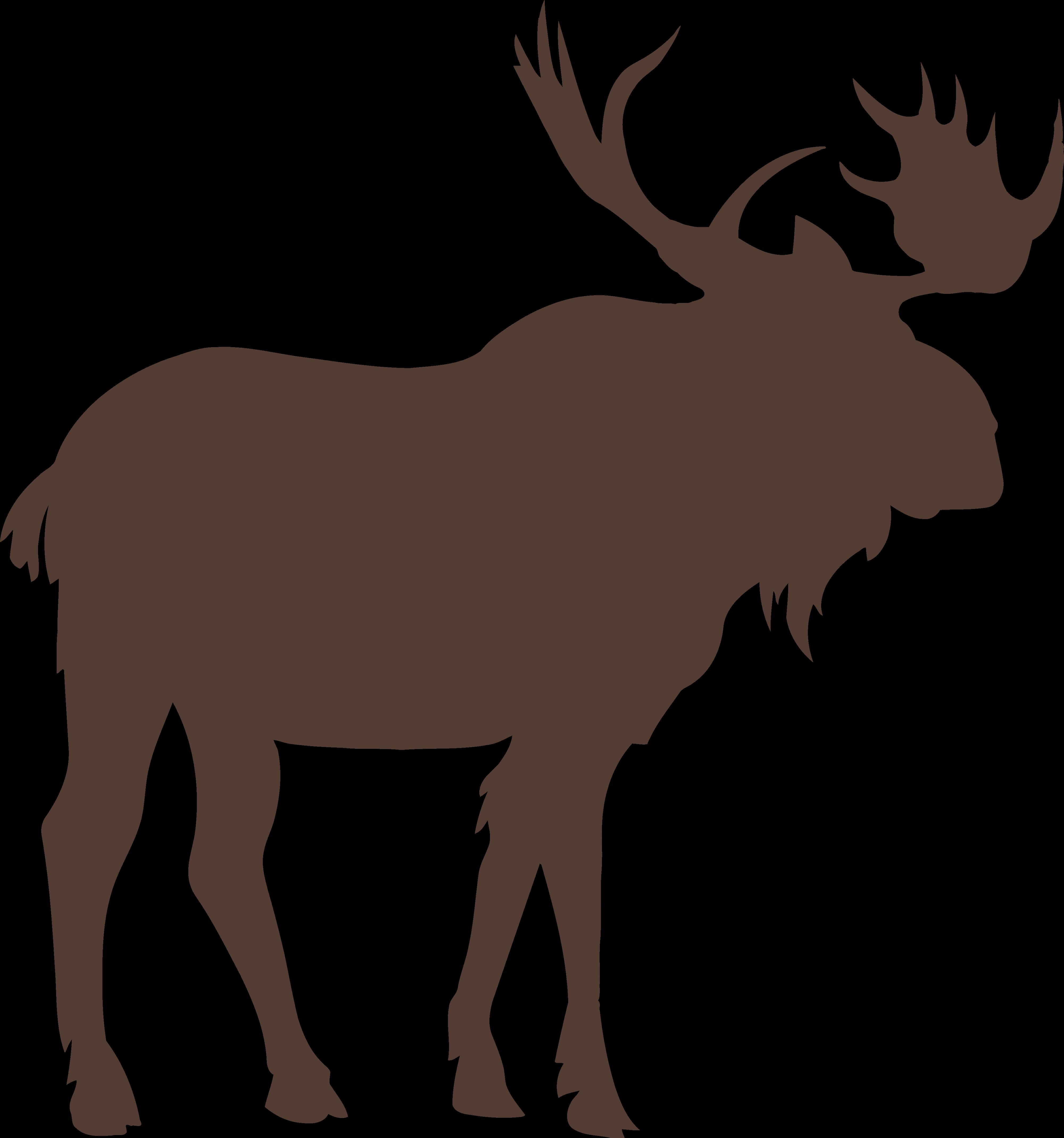 Moose Vector graphics Royalty.