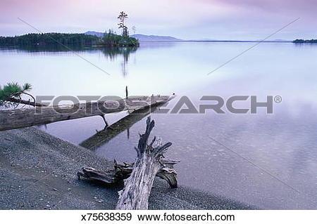 Stock Photograph of MOOSEHEAD LAKE, BEAVER COVE, MAINE x75638359.