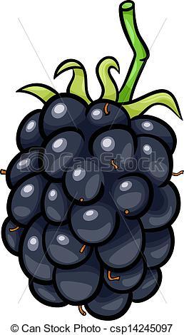 EPS Vectors of blackberry fruit cartoon illustration.