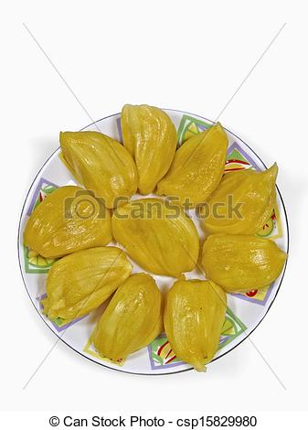 Pictures of Jackfruit, Artocarpus heterophyllus Lam, Moraceae.