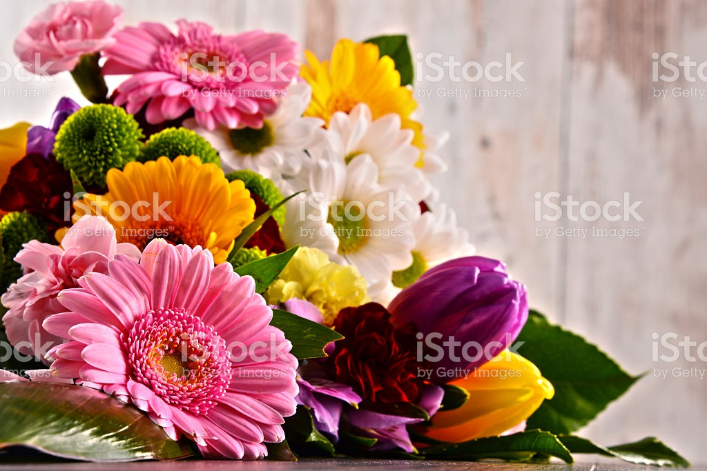 Flowers Pictures, Images and Stock Photos.