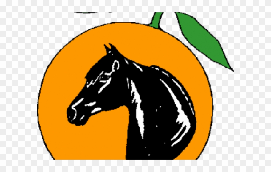 Mare Clipart Morgan Horse.