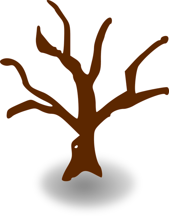 Free vector graphic: Tree, Map, Symbol, Map Legend.