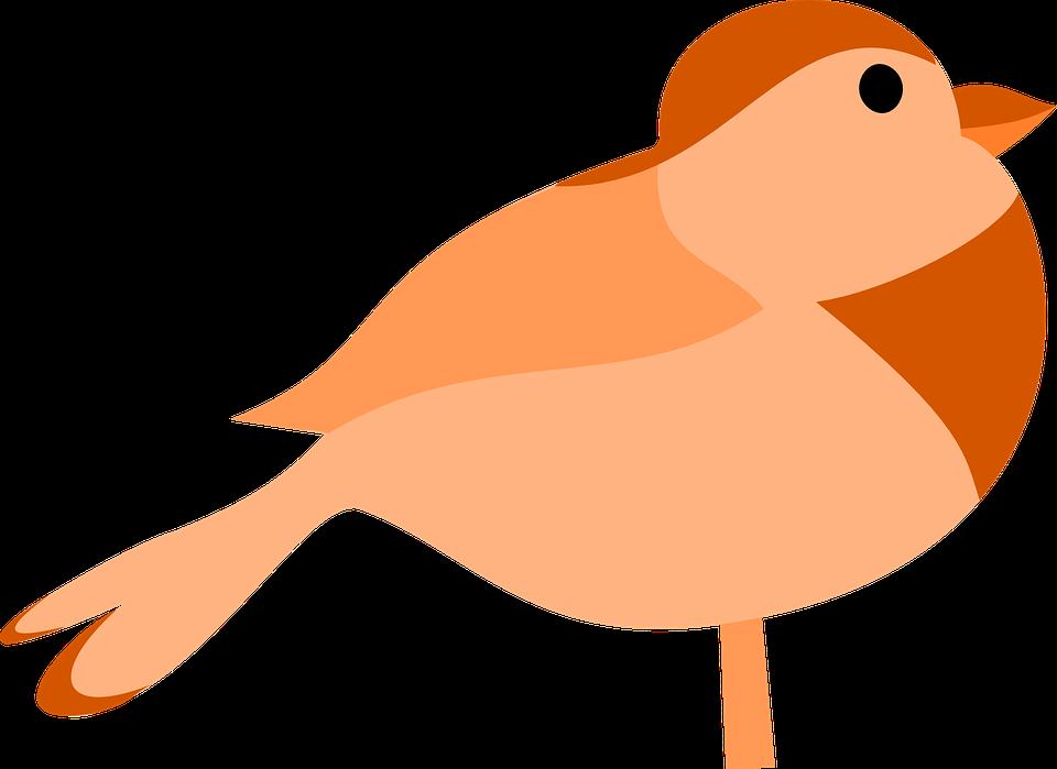 Free vector graphic: Bird, Orange, Brown, Robin, Small.