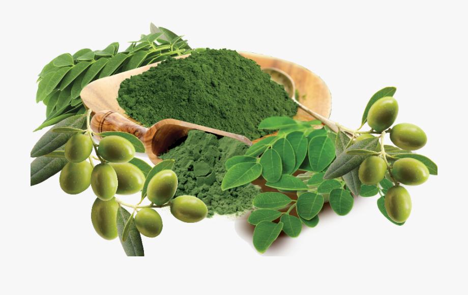 Moringa Leaf Powder Png , Transparent Cartoon, Free Cliparts.