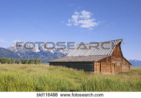 Pictures of Remains of a historic Barn front in Mormon Row near.