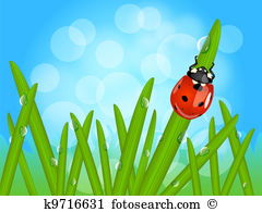Morning dew Clipart and Illustration. 226 morning dew clip art.
