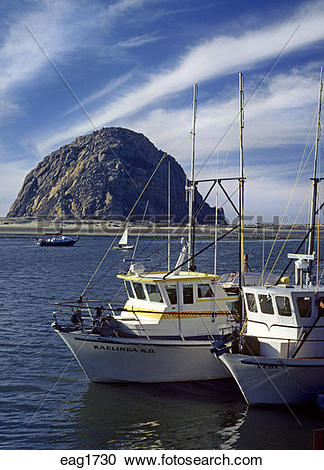Stock Photography of FISHING BOATS at anchor in MORRO BAY with.