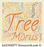 Morus Clipart Vector Graphics. 12 morus EPS clip art vector and.