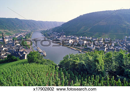Stock Photo of Germany, Cohem to Zell, vineyards and Moselle River.