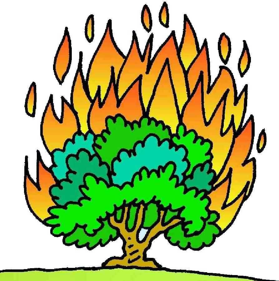 Burning Bush Colorful Clipart #1.