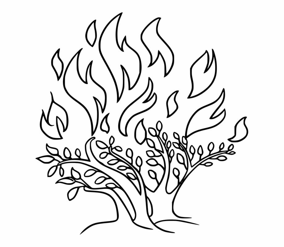 Bible Burn Burning Bush Fire God I Am Life Moses.