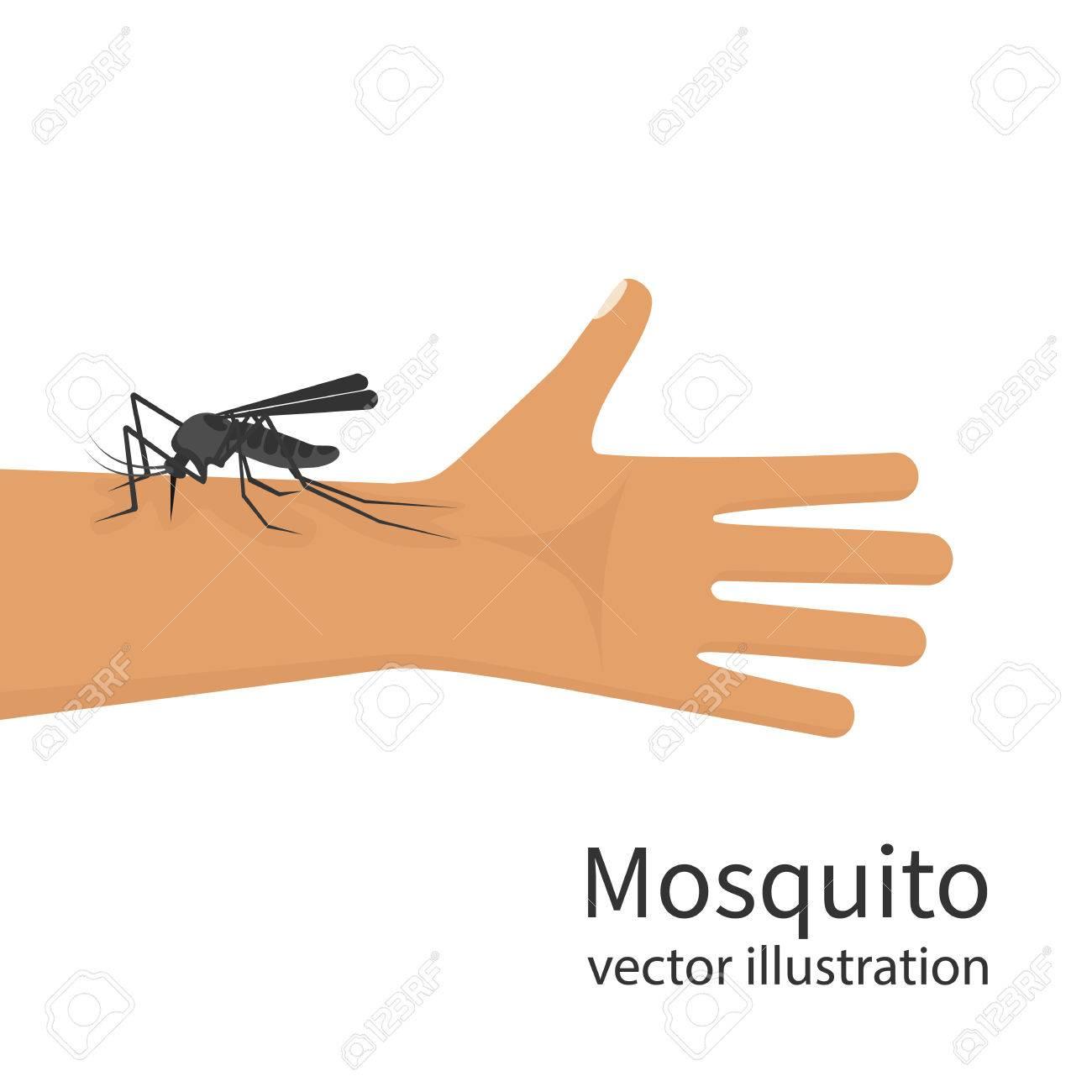 Mosquito bite on skin hand human vector.