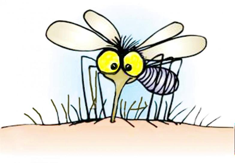 Mosquito Bite Itch.