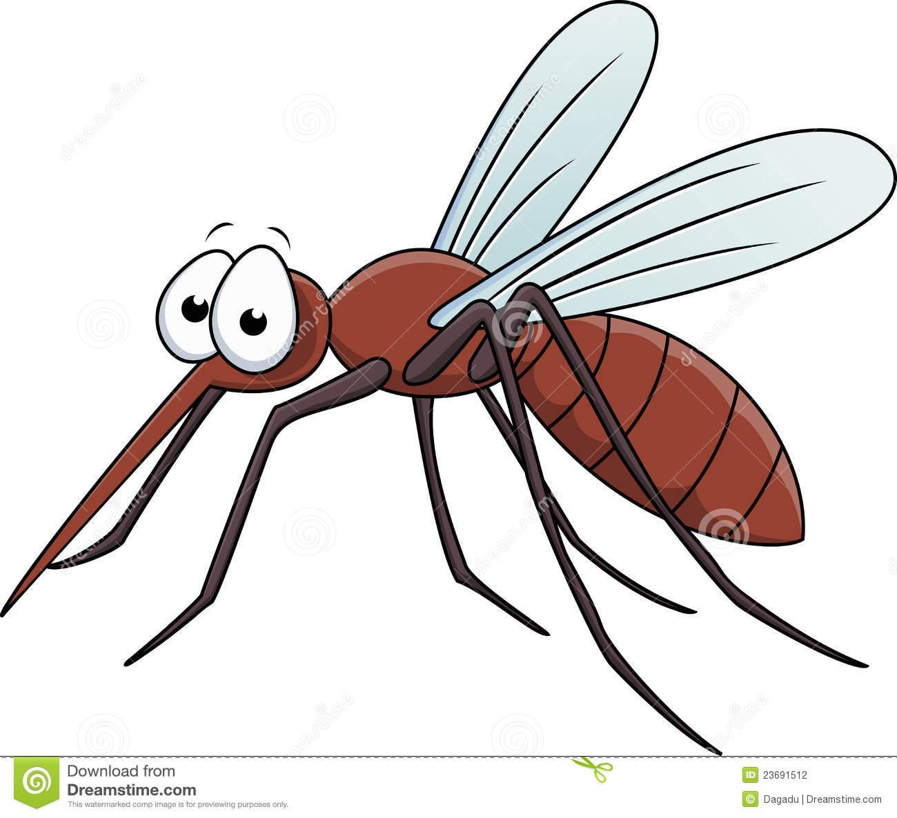 Dengue mosquito clipart.