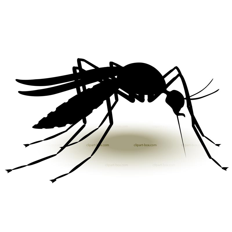 Mosquito Clipart.