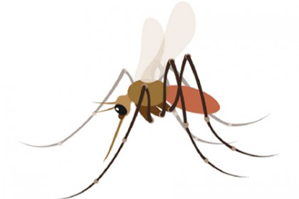 A mosquito emoji for public health awareness takes flight.