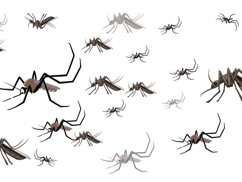 Will a New Mosquito Emoji Create Some Buzz About Insect.