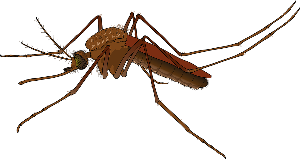 How an emoji could be used to battle mosquito.