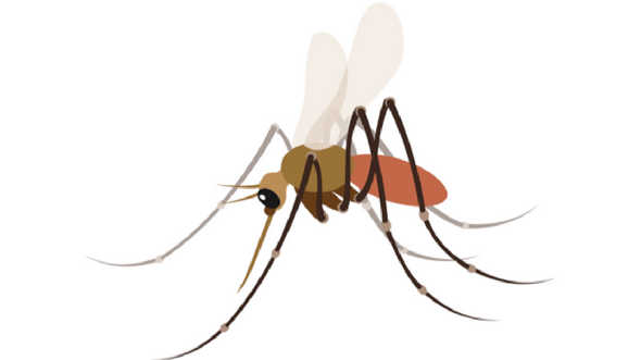 The New Mosquito Emoji is Much More than a Winky Face.
