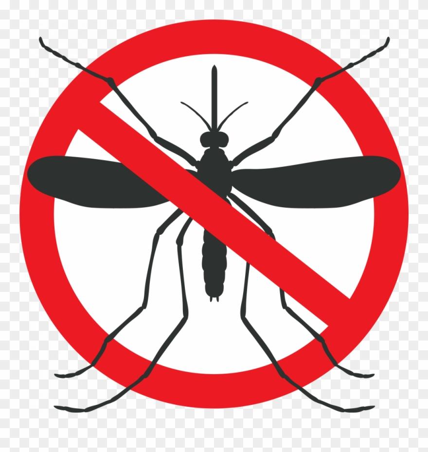 Mosquito Graphic.