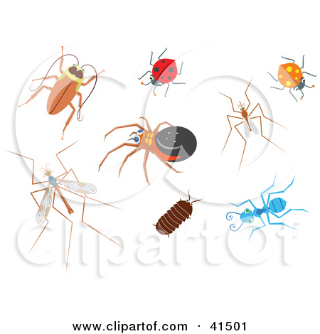 Clipart Illustration of a Cockroach, Ladybug, Spider, Mosquito.